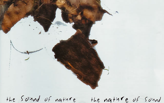 V/A – The Sound Of Nature ~ The Nature Of Sound